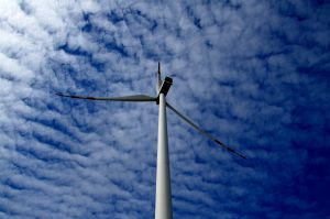 CBA bada darowizny od firm wiatrakowych